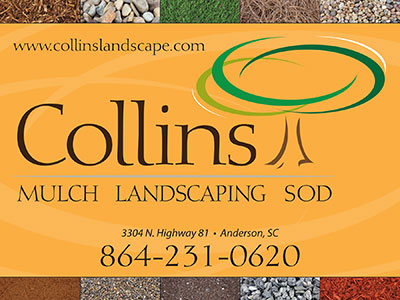 Collins-Direct-Mail-PC