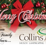 Collins-ChristmasInsert-Front-3