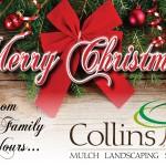 Collins-ChristmasInsert-Front-3