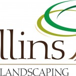 Collins Logo Color